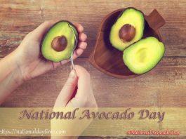 National Avocado Day 2020