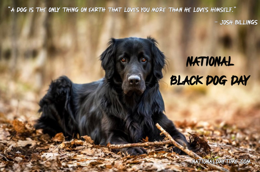 National Black Dog Day Quotes